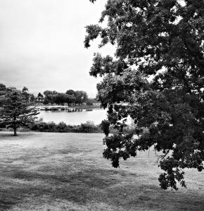 Madden's, Lake, Gull Lake