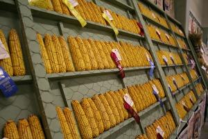 State Fair Corn