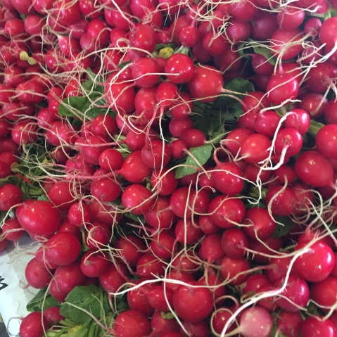 Radishes Minneapolis Farmers Market